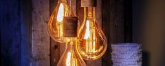 Antique Calex LED Bulbs