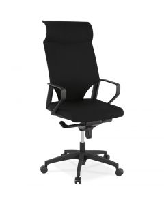 Emelie Padded Lumbar Support Office Chair