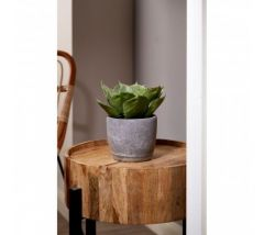 Nest Mango Wood Side Table