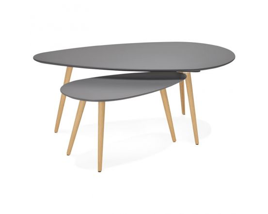 Birger Grey Set of 2 Oblong Coffee Tables
