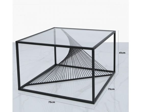 Erica Black Metal and Glass Coffee Table