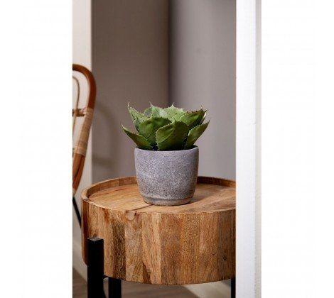 Nest Mango Wood Side Table